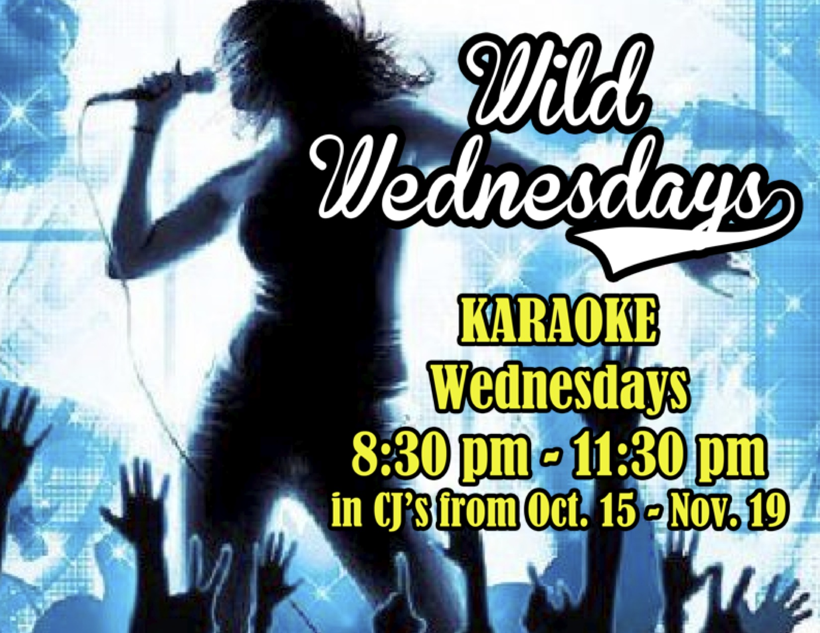 wildwed karaoke fall 2014